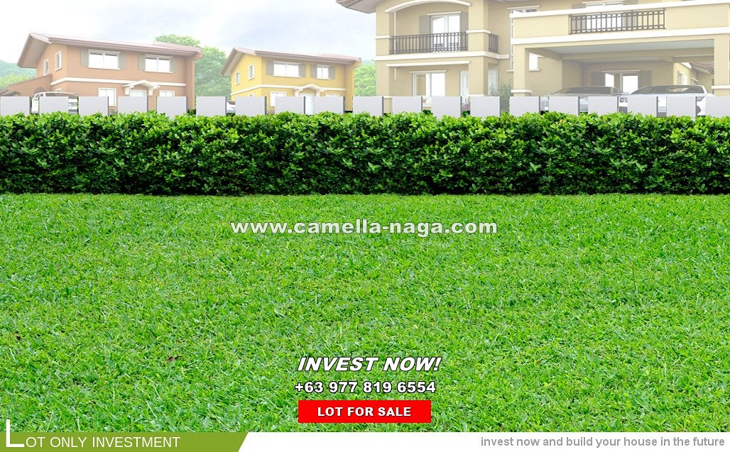 Lot House for Sale in Naga, Camarines Sur
